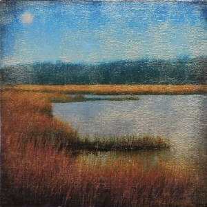 flax-pond-moonrise.jpg